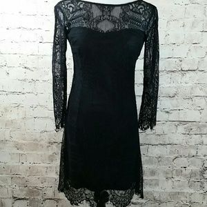 BB Dakota black lace form fitting dress